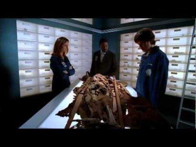 Trailer – Bones (sezonul 1)