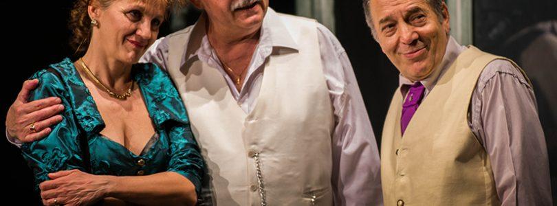 Program spectacole Teatrul Evreiesc de Stat | Luna IANUARIE 2018